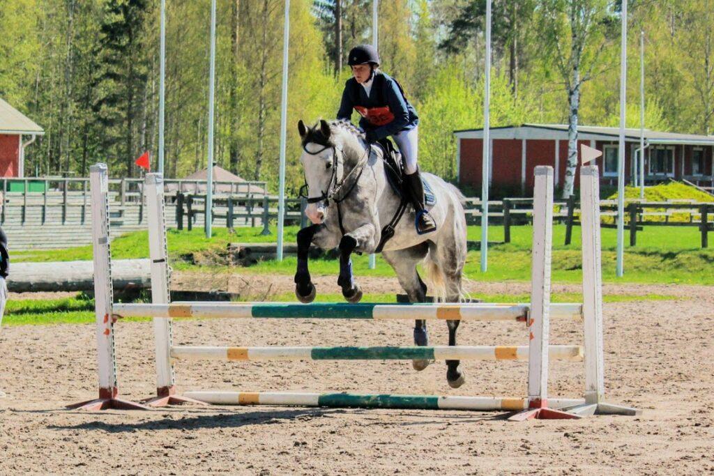 Hevonen, ratsastaja hyppäämässä esteen yli