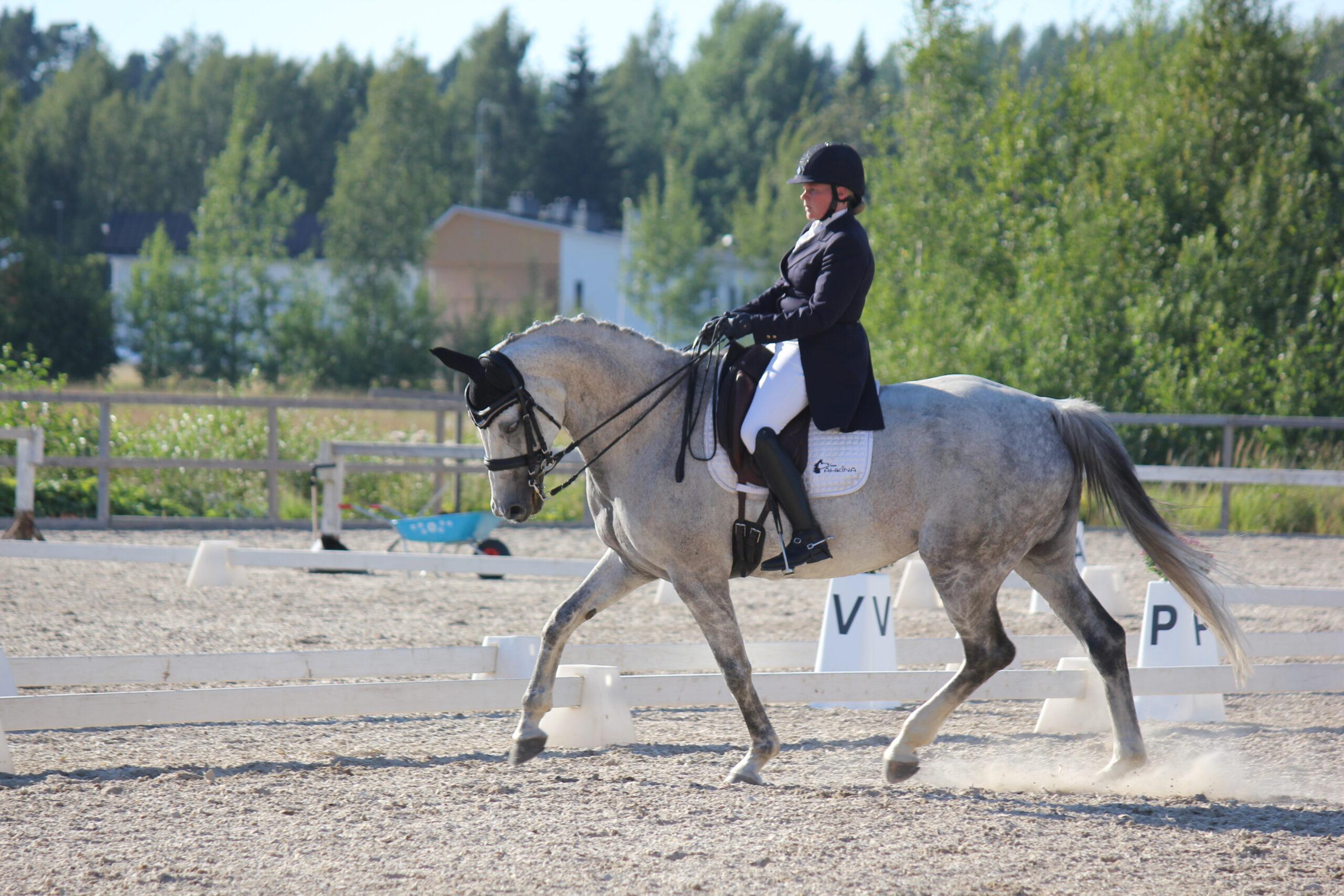 Kouluratsastus, ratsastaja, valkoinen hevonen