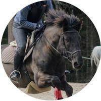 ympyrä, hevonen, turbo
