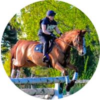 hevonen, ZZ, hyppää esteen yli, ympyrä